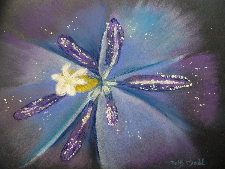 coeur de tulipe 2